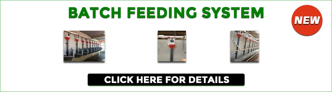 Batch Feeding System